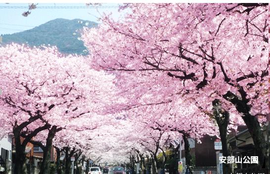 ようこそ!住みたくなる街。私たちの北九州市minami