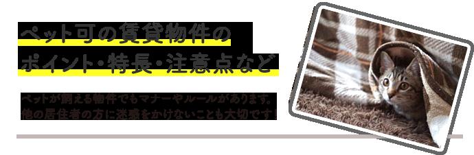 pet_cyuuiten